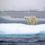Polar Bears Spotted on Crystal's Inaugural Northwest Passage Voyage