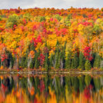 There's Still Time to See the Fall Colors in New England
