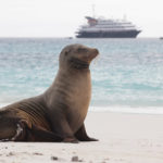This Year, Cross the Galápagos off Your Bucket List with a Silversea Cruise