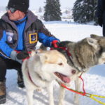 Go Dog Sledding on an Alaskan Glacier with Silversea