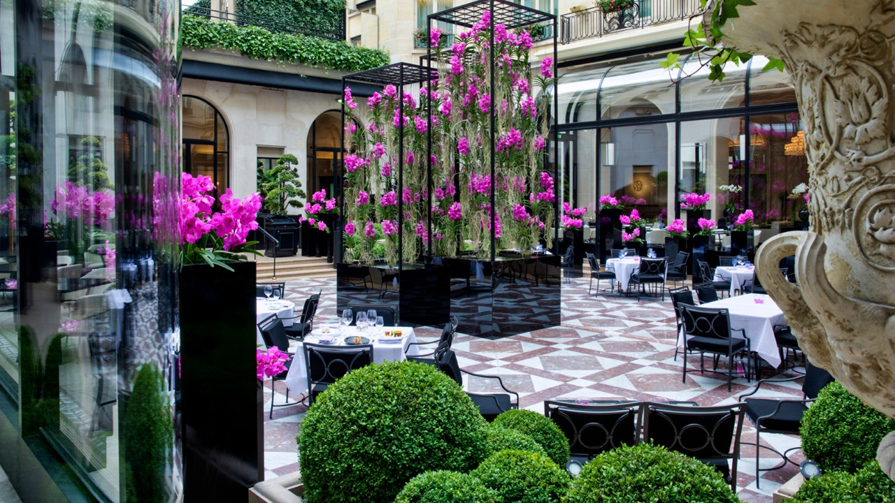Four seasons george v houses three michelin restaurants for Hotel george v jardins