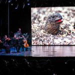Planet Earth II in Concert: Breathtaking New Show Debuts on Holland America