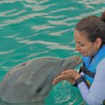 Dear Santa, I Want to Swim with Dolphins